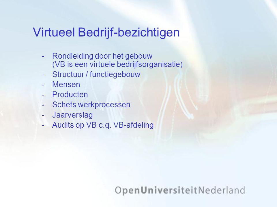 Virtueel Bedrijf-bezichtigen Rondleiding door het gebouw (VB is een virtuele bedrijfsorganisatie) Structuur / functiegebouw Mensen Producten Schets werkprocessen Jaarverslag Audits op VB c.q.