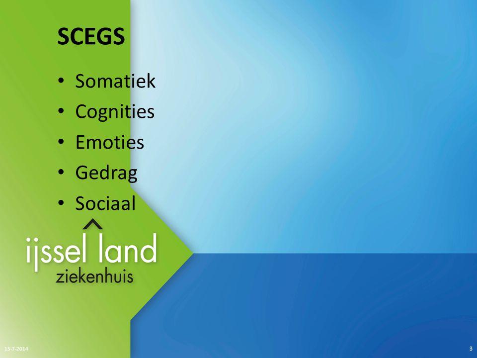 SCEGS Somatiek Cognities Emoties Gedrag Sociaal 15-7-2014 3