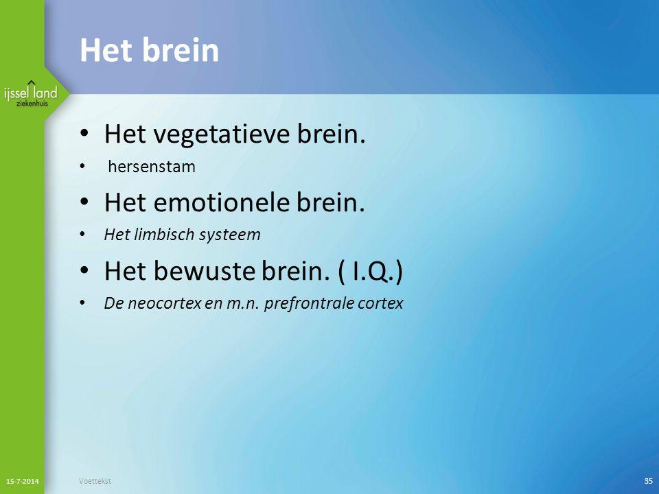 Het brein Het vegetatieve brein.hersenstam Het emotionele brein.