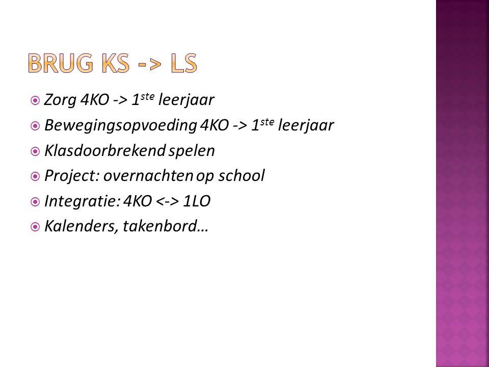  Zorg 4KO -> 1 ste leerjaar  Bewegingsopvoeding 4KO -> 1 ste leerjaar  Klasdoorbrekend spelen  Project: overnachten op school  Integratie: 4KO 1L