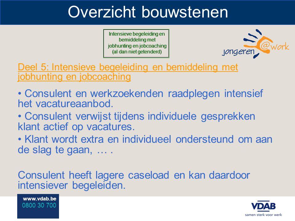 www.vdab.be 0800 30 700 Overzicht bouwstenen Deel 5: Intensieve begeleiding en bemiddeling met jobhunting en jobcoaching Consulent en werkzoekenden ra