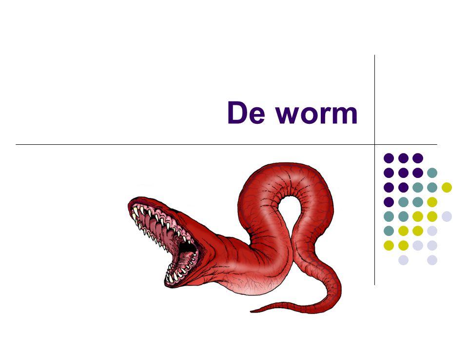 De worm