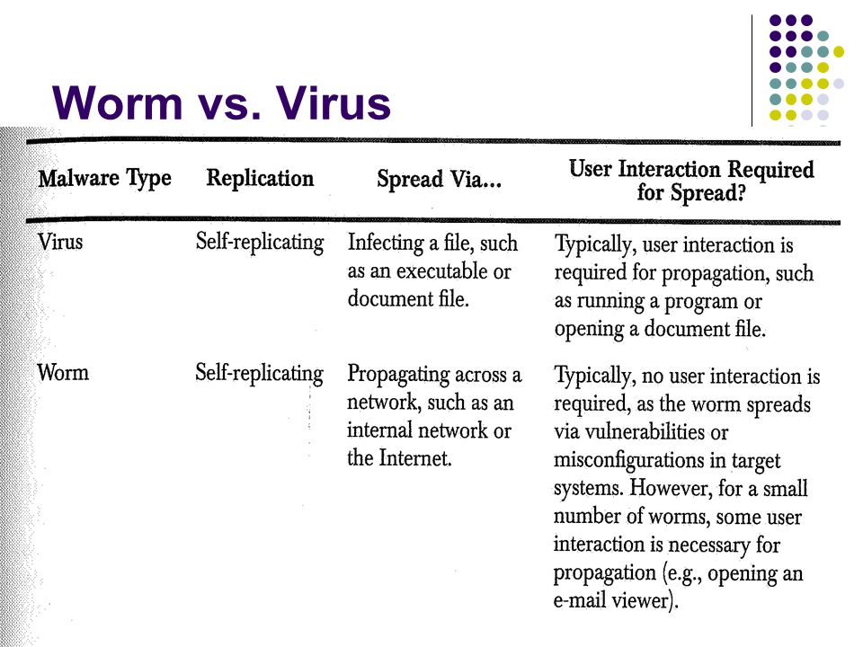 18 Worm vs. Virus