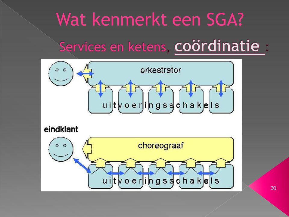 Presentatie SGA 17 januari 2008 studiegroep 4 30 Wat kenmerkt een SGA