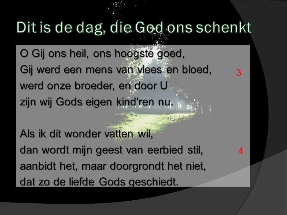 O Gij ons heil, ons hoogste goed, Gij werd een mens van vlees en bloed, werd onze broeder, en door U zijn wij Gods eigen kind'ren nu. Als ik dit wonde