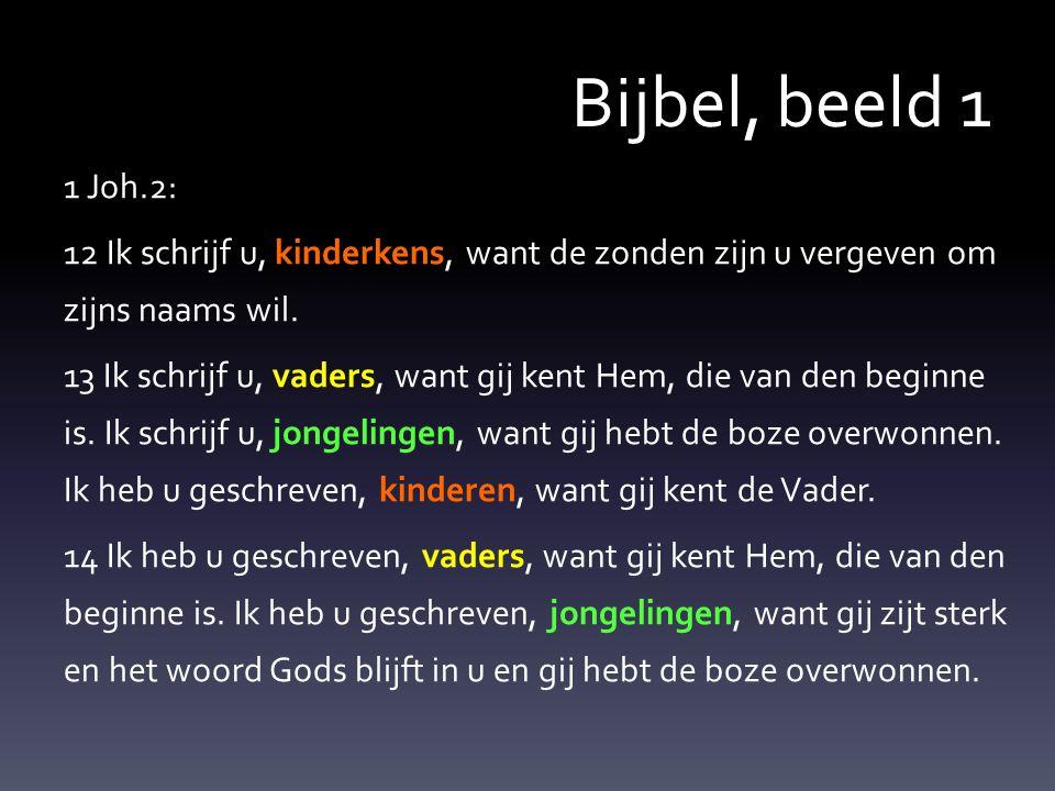 Bijbel, beeld 1 1 Joh.2: 12 Ik schrijf u, kinderkens, want de zonden zijn u vergeven om zijns naams wil.
