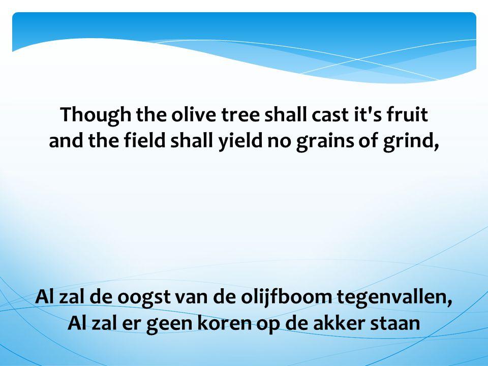Though the olive tree shall cast it s fruit and the field shall yield no grains of grind, Al zal de oogst van de olijfboom tegenvallen, Al zal er geen koren op de akker staan