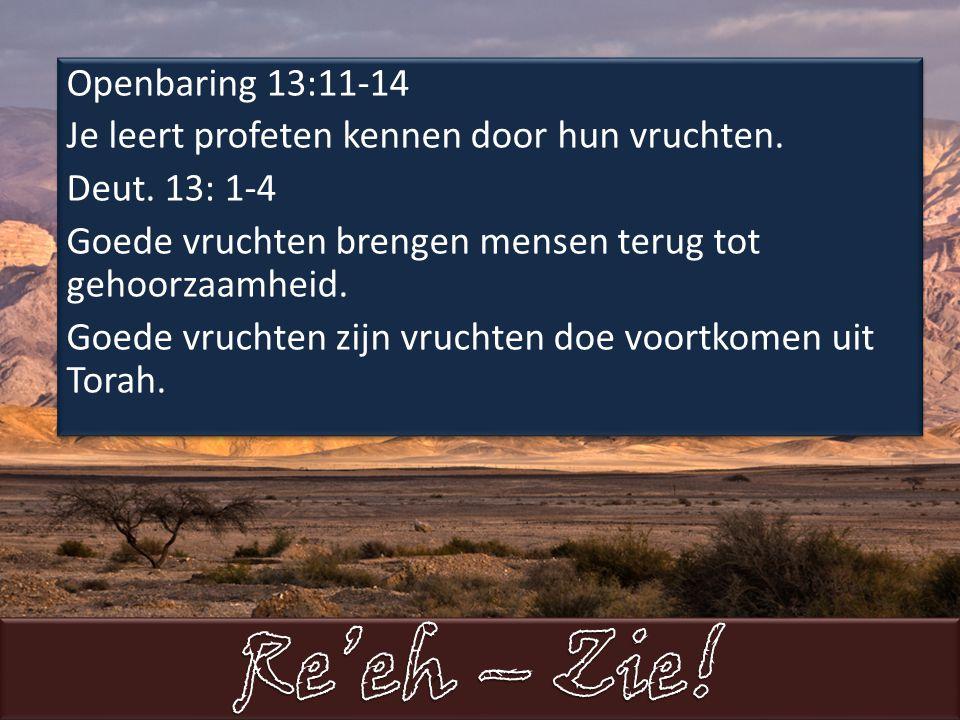 Openbaring 13:11-14 Je leert profeten kennen door hun vruchten.