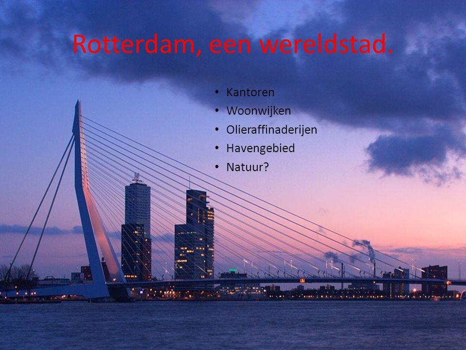 Rotterdam, een wereldstad. Kantoren Woonwijken Olieraffinaderijen Havengebied Natuur?