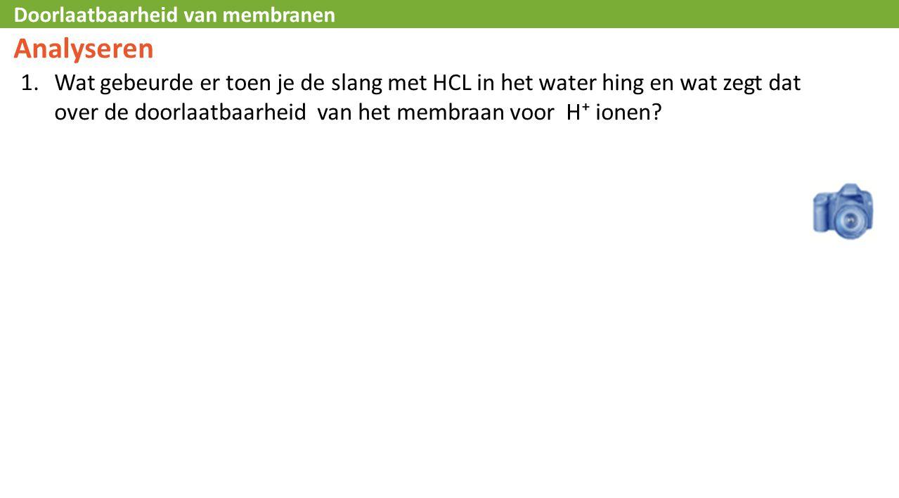 Doorlaatbaarheid van membranen Analyseren 1.Wat gebeurde er toen je de slang met HCL in het water hing en wat zegt dat over de doorlaatbaarheid van het membraan voor H⁺ ionen?