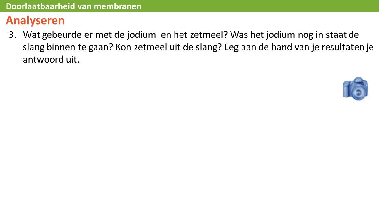 Doorlaatbaarheid van membranen Analyseren 3.Wat gebeurde er met de jodium en het zetmeel.