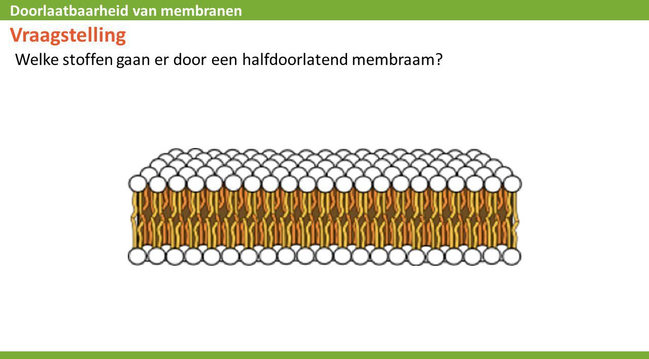 Doorlaatbaarheid van membranen Vraagstelling Welke stoffen gaan er door een halfdoorlatend membraam?