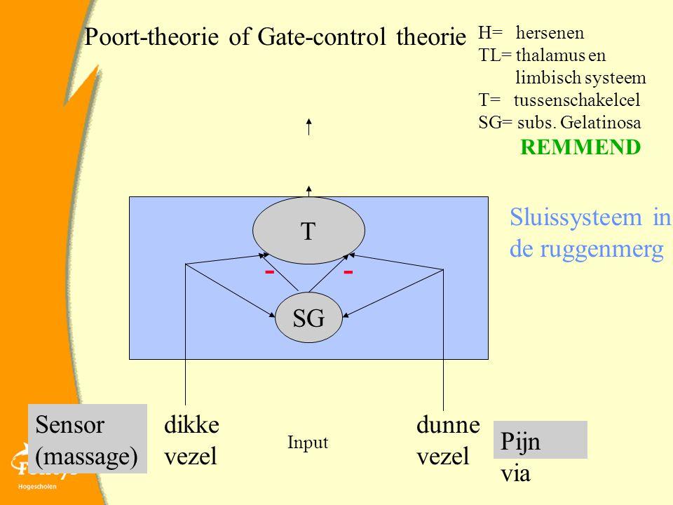 Poort-theorie of Gate-control theorie dunne vezel dikke vezel Sluissysteem in de ruggenmerg Pijn via Sensor (massage) T SG H= hersenen TL= thalamus en limbisch systeem T= tussenschakelcel SG= subs.