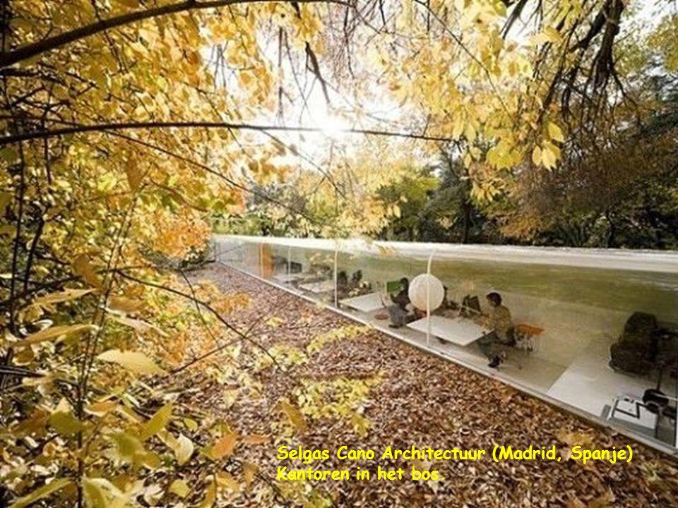 Selgas Cano Architectuur (Madrid, Spanje) Kantoren in het bos.