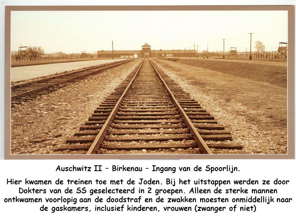 Auschwitz I – De Muur van de Dood Ook hier werden duizenden gevangenen gedood met een nekschot. Meestal gevangenen van de Gestapo die een straf uitzat