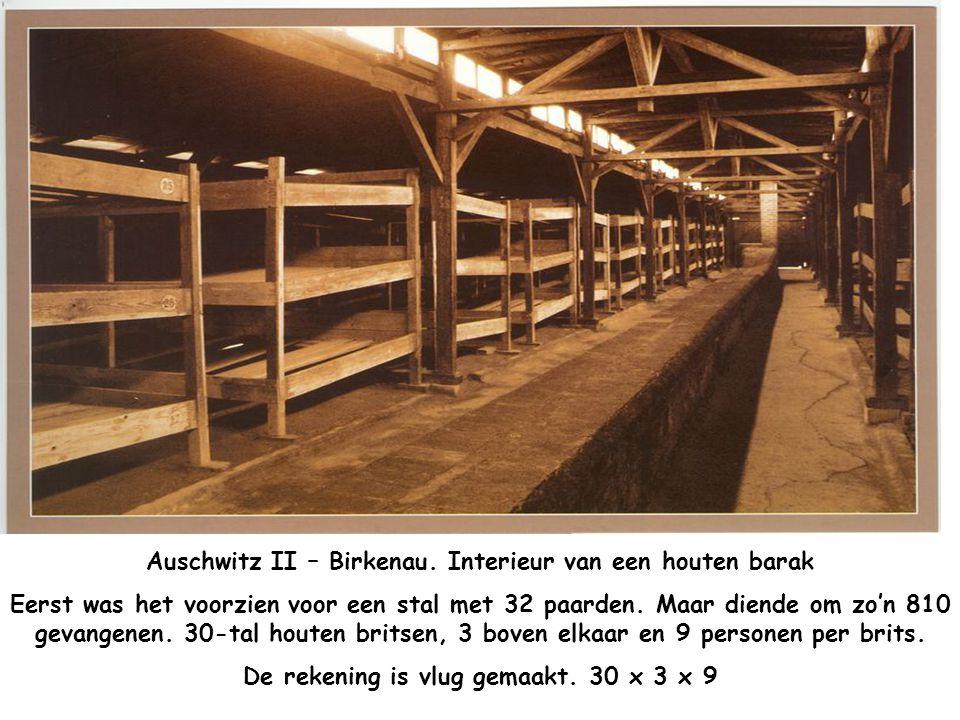 Auschwitz II – Birkenau – Ingang van de Spoorlijn. Hier kwamen de treinen toe met de Joden. Bij het uitstappen werden ze door Dokters van de SS gesele