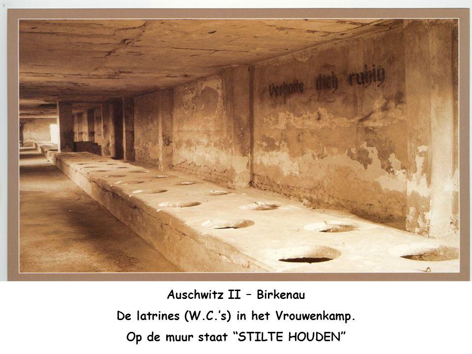 Auschwitz II – Birkenau. Interieur van een houten barak Eerst was het voorzien voor een stal met 32 paarden. Maar diende om zo'n 810 gevangenen. 30-ta