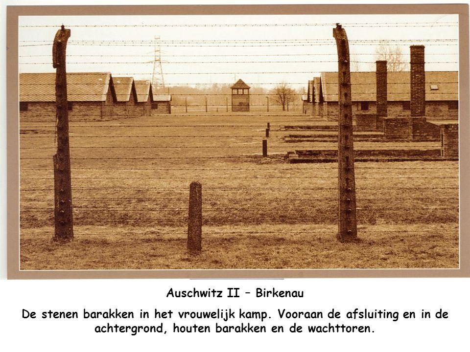 """Auschwitz II – Birkenau De latrines (W.C.'s) in het Vrouwenkamp. Op de muur staat """"STILTE HOUDEN"""""""