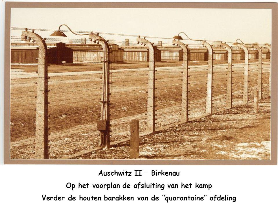 Auschwitz II – Birkenau De stenen barakken in het vrouwelijk kamp. Vooraan de afsluiting en in de achtergrond, houten barakken en de wachttoren.