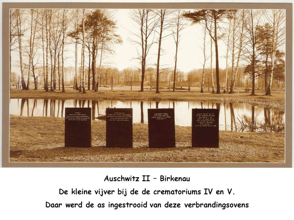 """Auschwitz II – Birkenau Op het voorplan de afsluiting van het kamp Verder de houten barakken van de """"quarantaine"""" afdeling"""