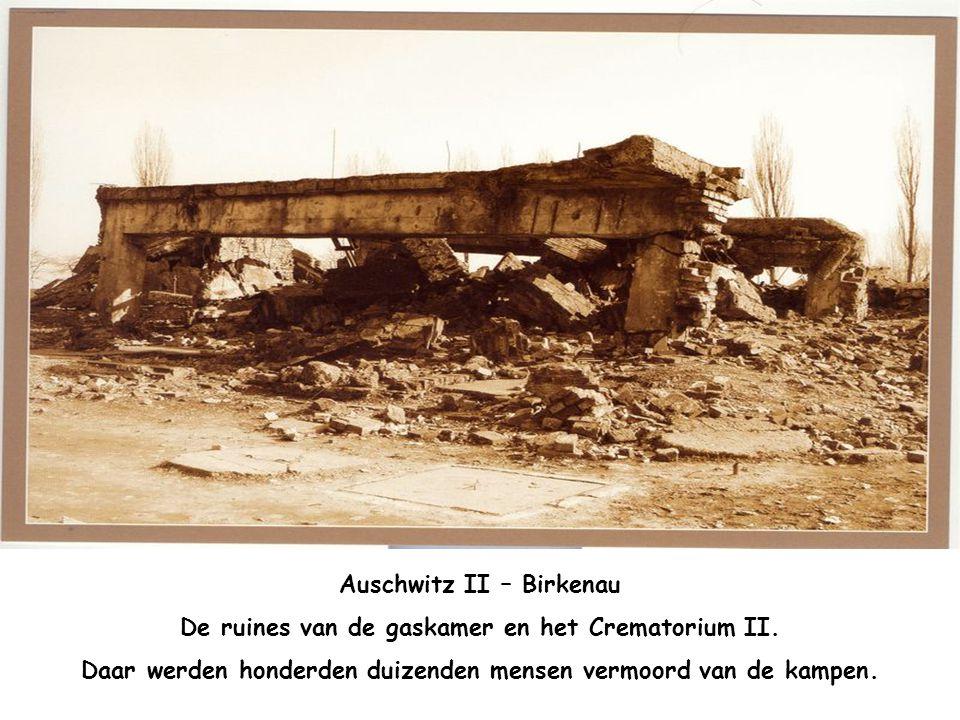 Auschwitz II – Birkenau De kleine vijver bij de de crematoriums IV en V. Daar werd de as ingestrooid van deze verbrandingsovens