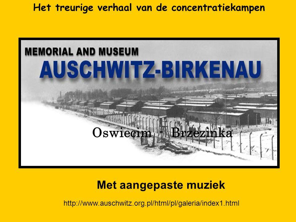 Aan de meer dan 1.500.000 doden in het Concentratiekamp van Auschwitz - Birkenau Door Carmen – Denise Georges en Pierre