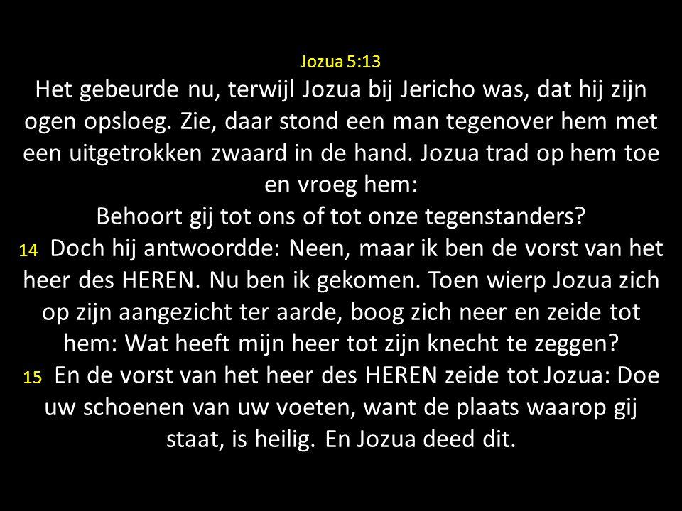 Jozua 5:13 Het gebeurde nu, terwijl Jozua bij Jericho was, dat hij zijn ogen opsloeg.