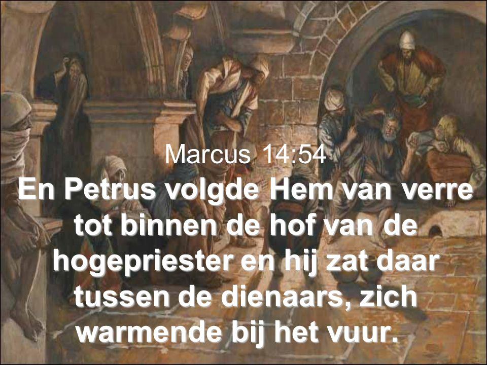En Petrus volgde Hem van verre tot binnen de hof van de hogepriester en hij zat daar tussen de dienaars, zich warmende bij het vuur.