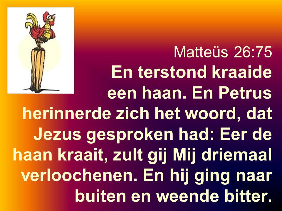 Matteüs 26:75 En terstond kraaide een haan. En Petrus herinnerde zich het woord, dat Jezus gesproken had: Eer de haan kraait, zult gij Mij driemaal ve