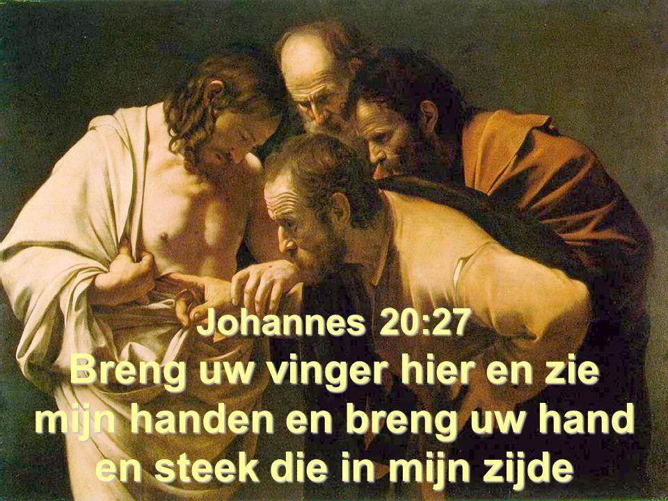 Johannes 20:27 Breng uw vinger hier en zie mijn handen en breng uw hand en steek die in mijn zijde