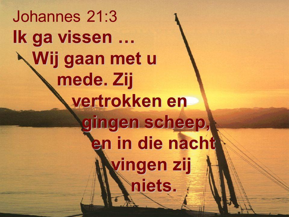 Ik ga vissen … Wij gaan met u mede. Zij vertrokken en gingen scheep, en in die nacht vingen zij niets. Johannes 21:3 Ik ga vissen … Wij gaan met u med