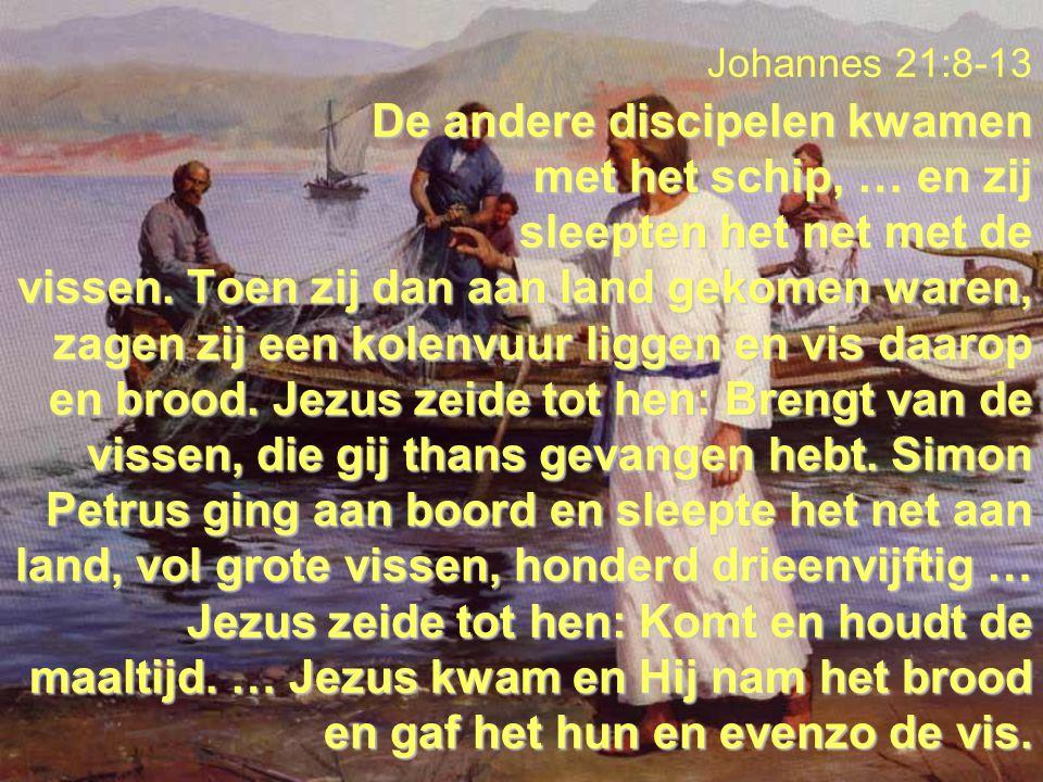 De andere discipelen kwamen met het schip, … en zij sleepten het net met de vissen. Toen zij dan aan land gekomen waren, zagen zij een kolenvuur ligge