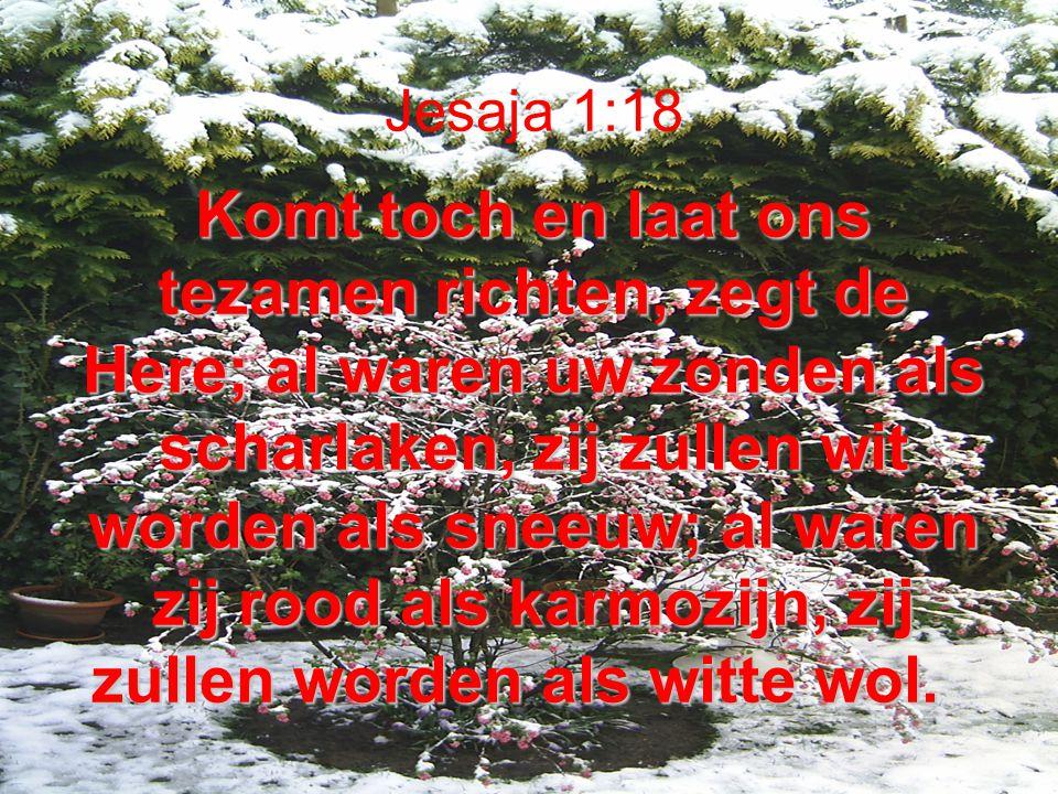 Komt toch en laat ons tezamen richten, zegt de Here; al waren uw zonden als scharlaken, zij zullen wit worden als sneeuw; al waren zij rood als karmoz