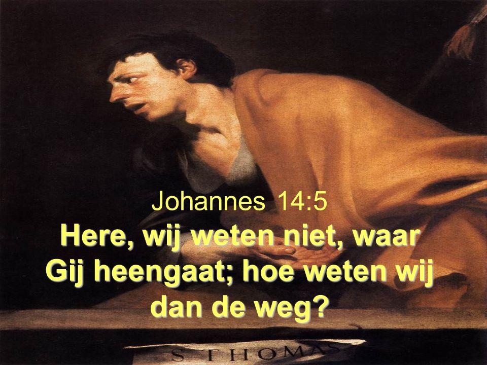 Here, wij weten niet, waar Gij heengaat; hoe weten wij dan de weg? Johannes 14:5 Here, wij weten niet, waar Gij heengaat; hoe weten wij dan de weg?