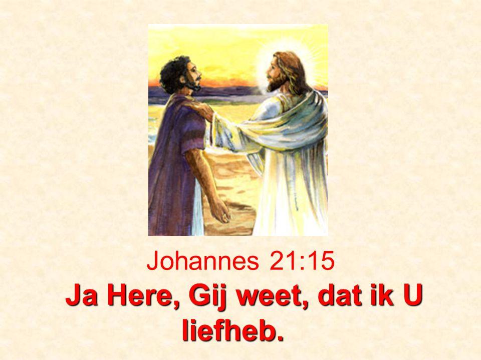 Ja Here, Gij weet, dat ik U liefheb. Johannes 21:15 Ja Here, Gij weet, dat ik U liefheb.