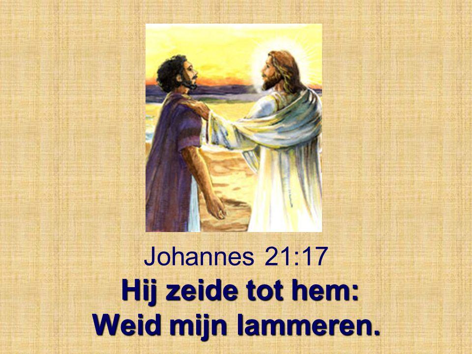 Hij zeide tot hem: Weid mijn lammeren. Johannes 21:17 Hij zeide tot hem: Weid mijn lammeren.