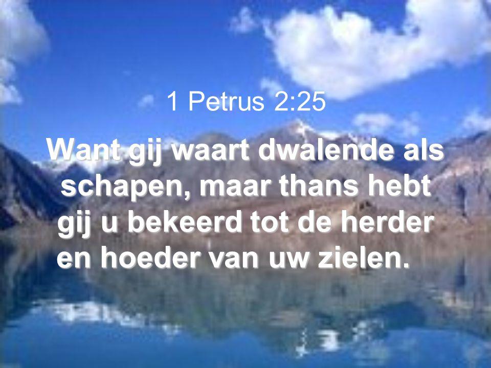 Want gij waart dwalende als schapen, maar thans hebt gij u bekeerd tot de herder en hoeder van uw zielen. 1 Petrus 2:25 Want gij waart dwalende als sc