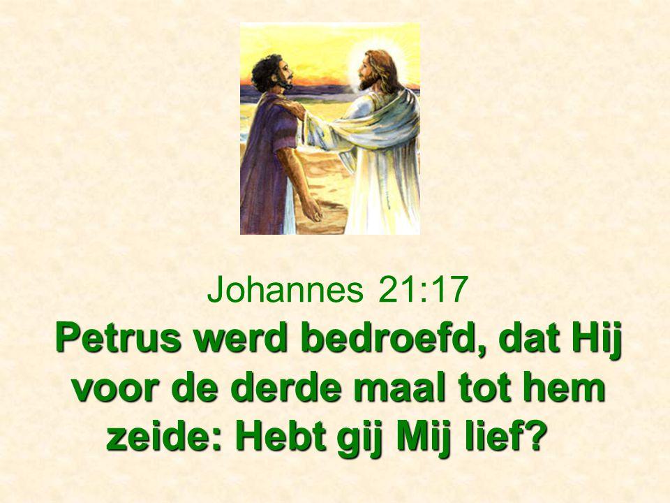 Petrus werd bedroefd, dat Hij voor de derde maal tot hem zeide: Hebt gij Mij lief? Johannes 21:17 Petrus werd bedroefd, dat Hij voor de derde maal tot