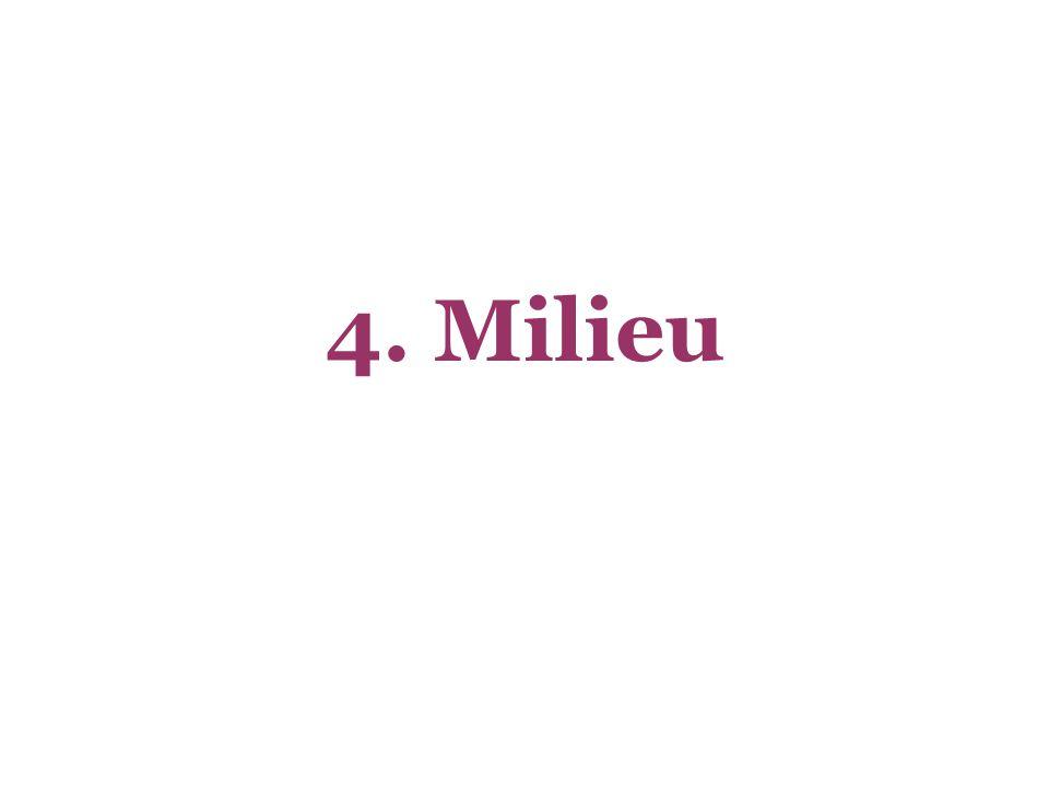 4. Milieu