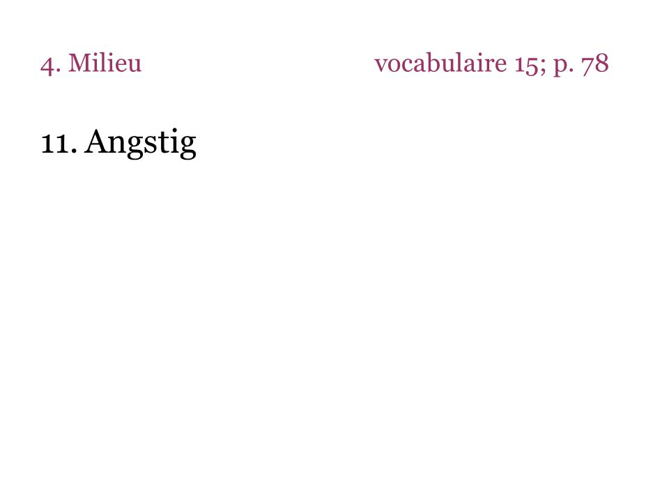 4. Milieuvocabulaire 15; p. 78 11.Angstig