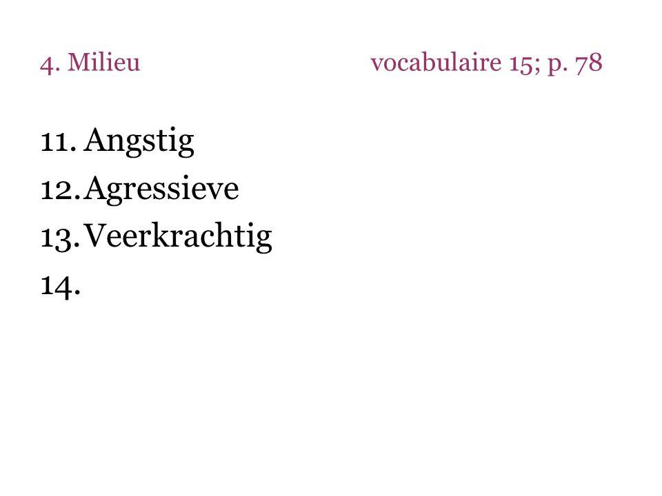 4. Milieuvocabulaire 15; p. 78 11.Angstig 12.Agressieve 13.Veerkrachtig 14.