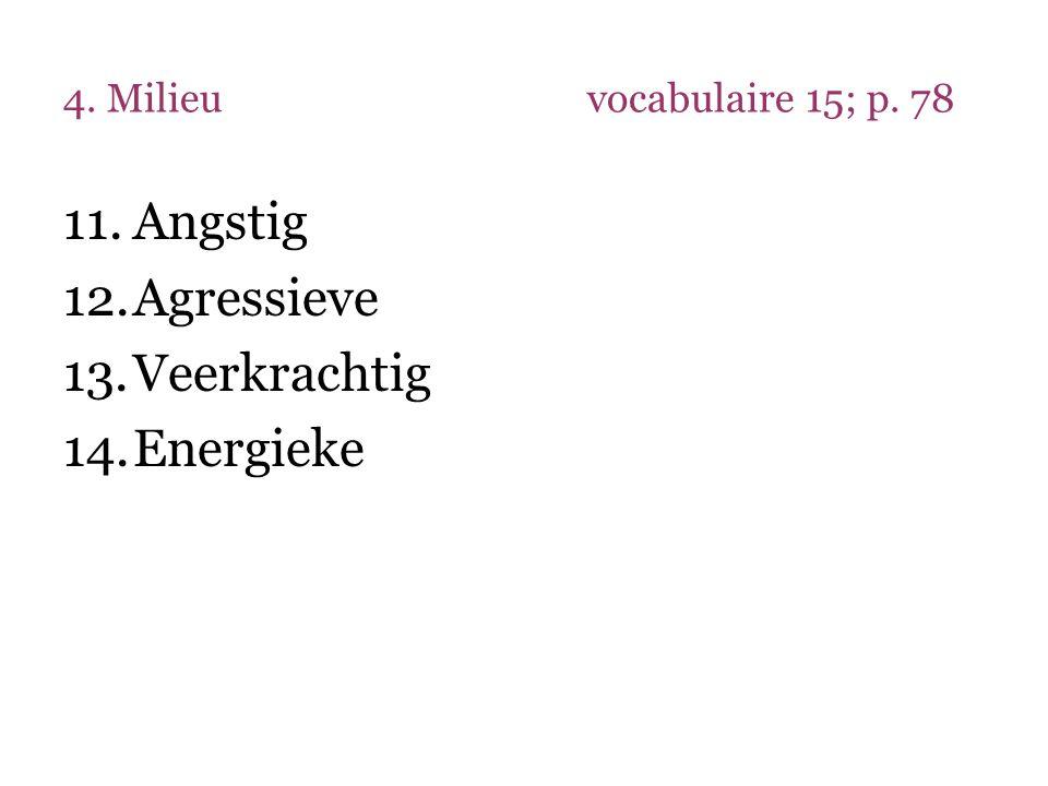 4. Milieuvocabulaire 15; p. 78 11.Angstig 12.Agressieve 13.Veerkrachtig 14.Energieke