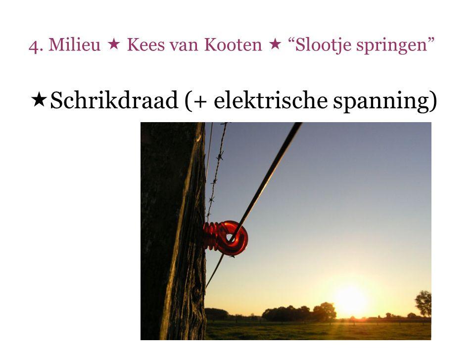 """4. Milieu  Kees van Kooten  """"Slootje springen""""  Schrikdraad (+ elektrische spanning)"""