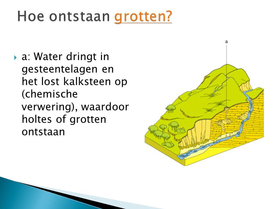  a: Water dringt in gesteentelagen en het lost kalksteen op (chemische verwering), waardoor holtes of grotten ontstaan
