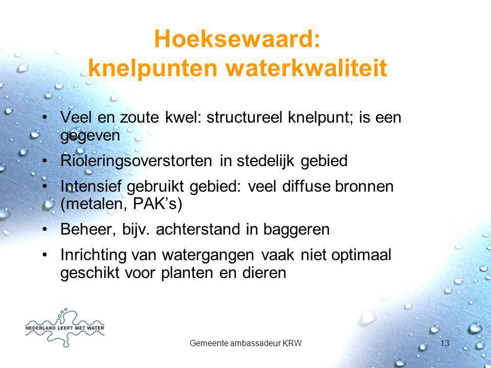 Gemeente ambassadeur KRW13 Hoeksewaard: knelpunten waterkwaliteit Veel en zoute kwel: structureel knelpunt; is een gegeven Rioleringsoverstorten in st