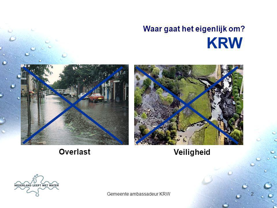 Gemeente ambassadeur KRW13 Hoeksewaard: knelpunten waterkwaliteit Veel en zoute kwel: structureel knelpunt; is een gegeven Rioleringsoverstorten in stedelijk gebied Intensief gebruikt gebied: veel diffuse bronnen (metalen, PAK's) Beheer, bijv.