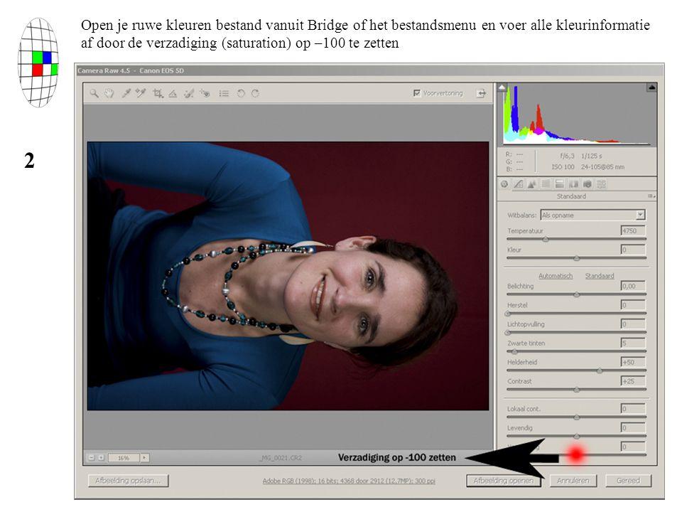 Open je ruwe kleuren bestand vanuit Bridge of het bestandsmenu en voer alle kleurinformatie af door de verzadiging (saturation) op –100 te zetten 2