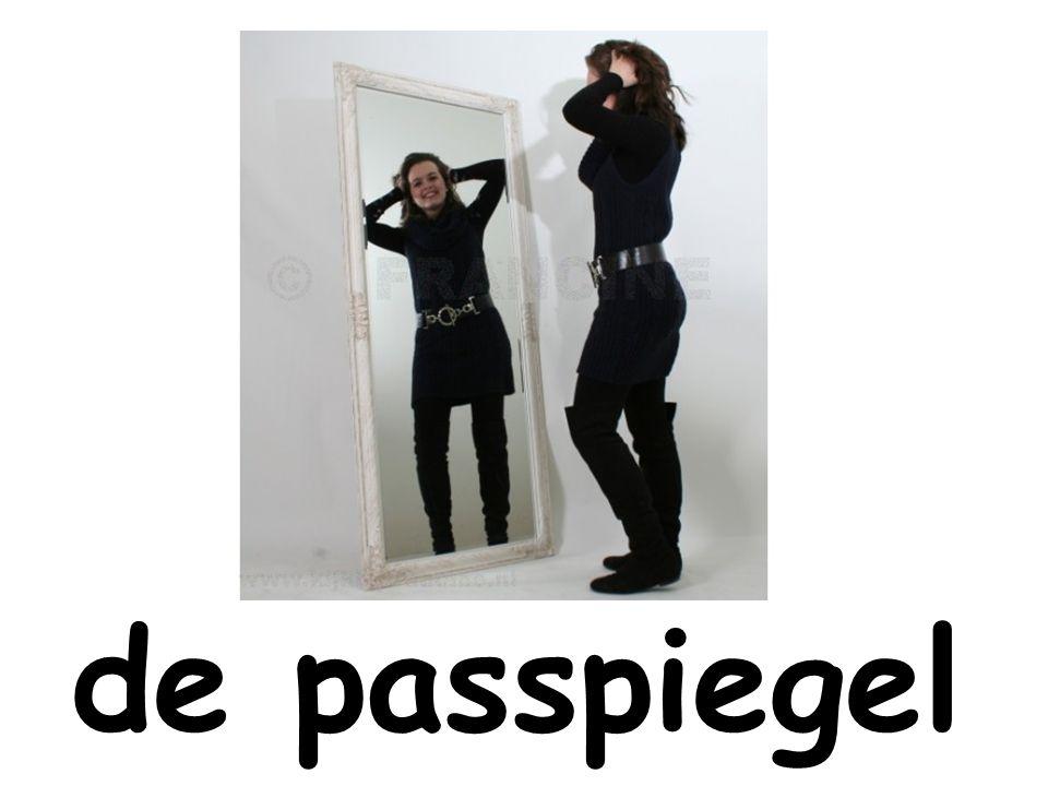 de passpiegel