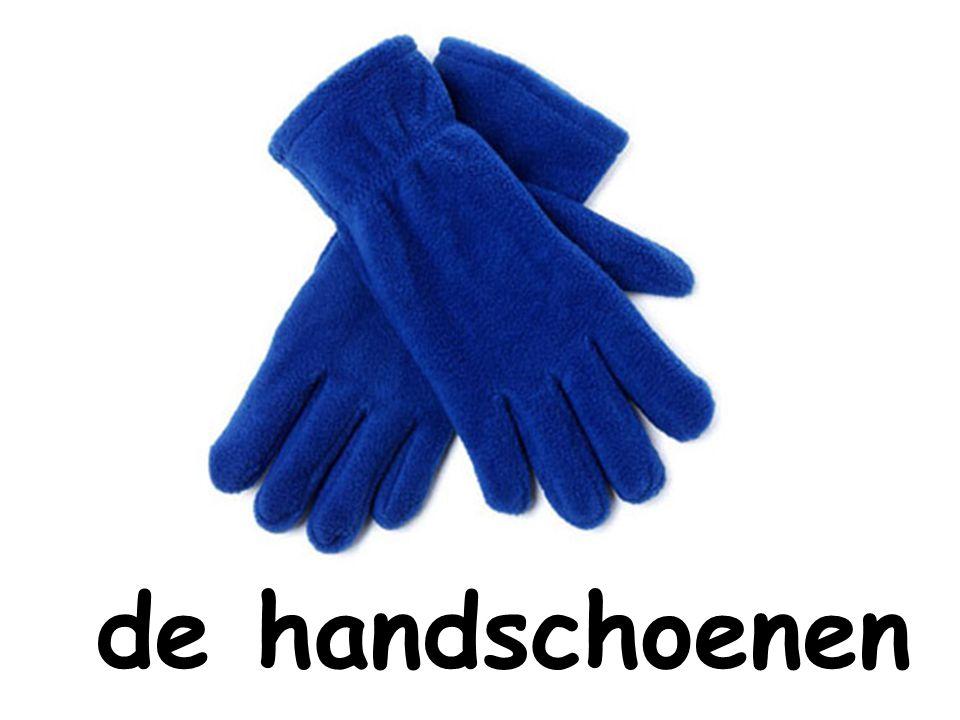 de handschoenen