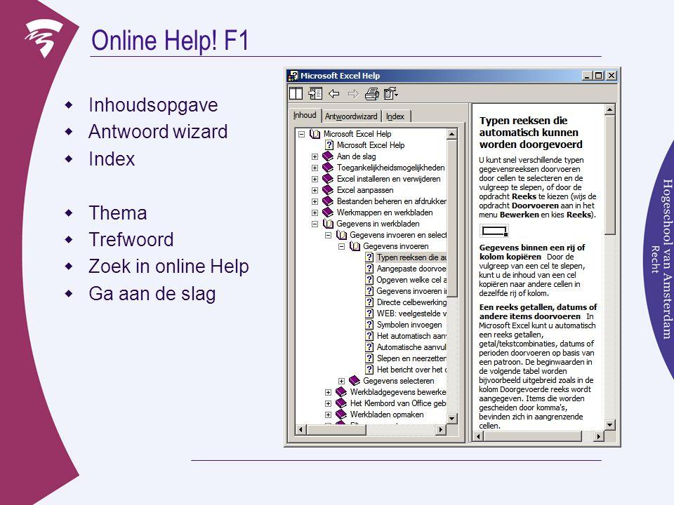 Online Help! F1  Inhoudsopgave  Antwoord wizard  Index  Thema  Trefwoord  Zoek in online Help  Ga aan de slag